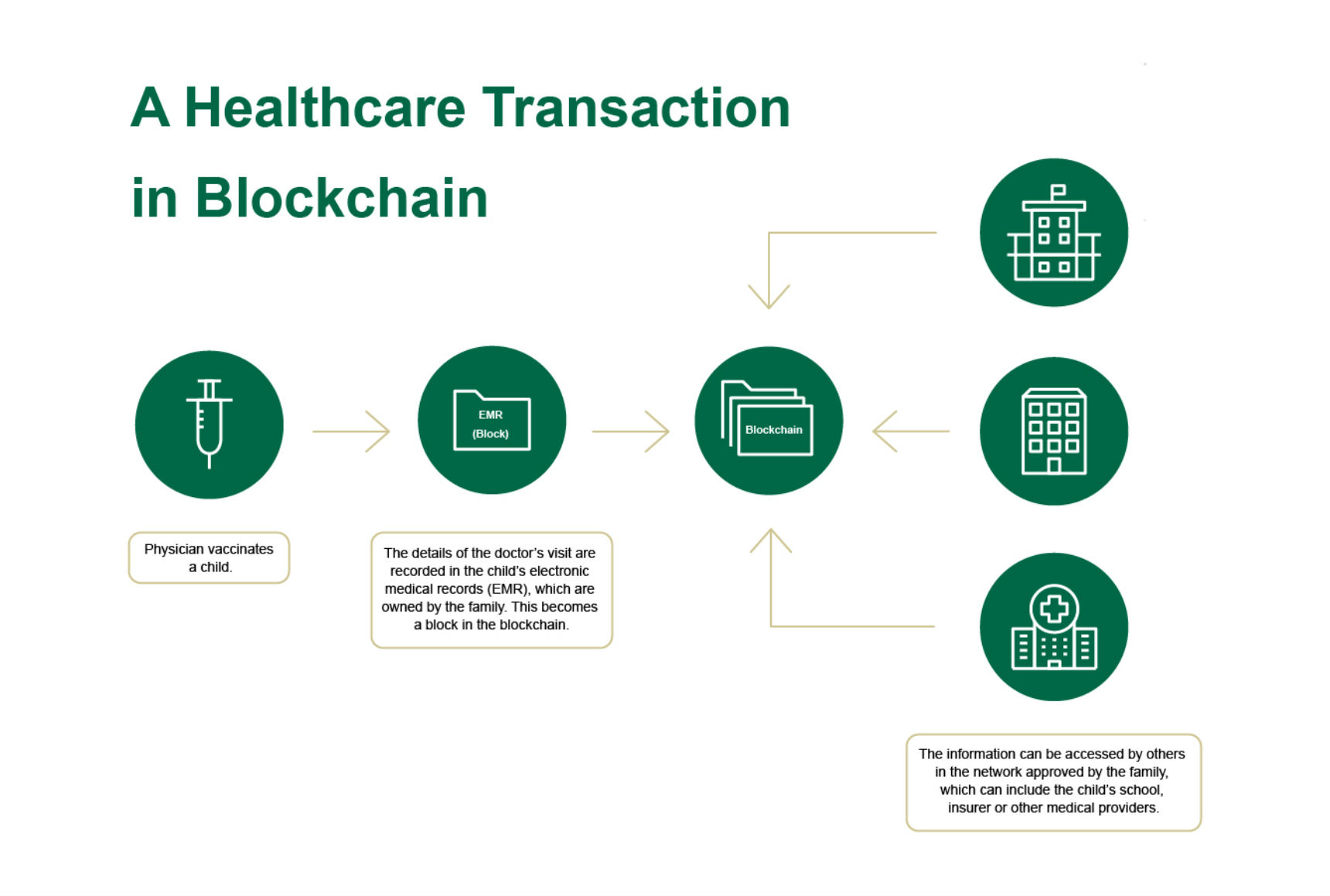 Blockchains healthcare future usf health online this decentralized approach makes the records more secure all but impossible to alter and less susceptible to theft the benefit to doctors is that records ccuart Images